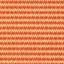 679(오렌지)